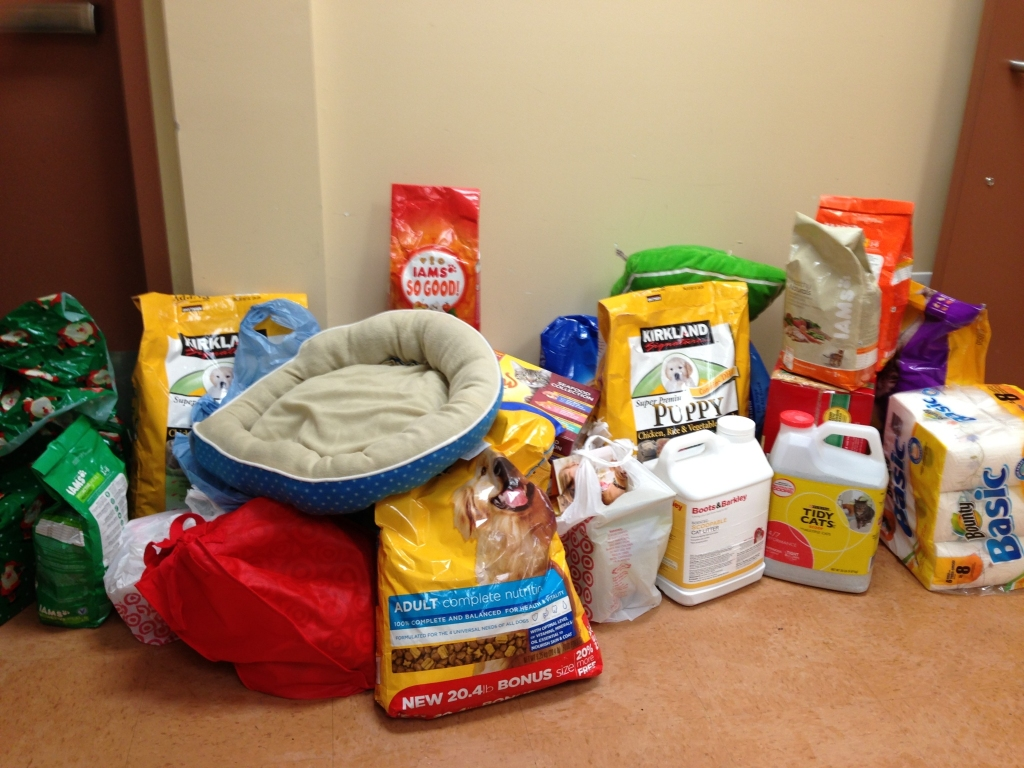 Animal Shelter Pillow Donation : Firm News - Law Firm Martin Kane Kuper Attorneys East Brunswick, New JerseyMartin Kane Kuper